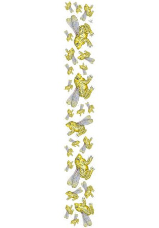Foulard Grenouille blanc